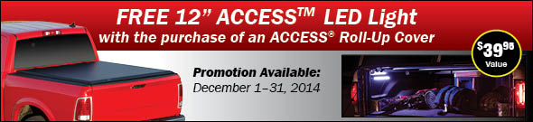 ACCESS Holiday Sale