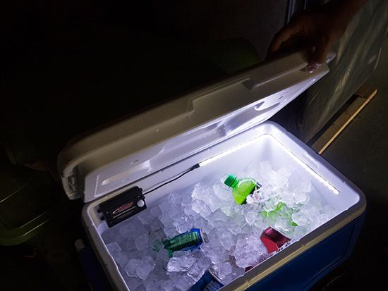 ACCESS Motion LED Light in Cooler